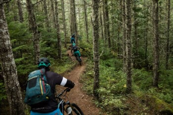 Mountain Bike Tours category photo